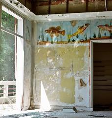 Physiopolis, an extinct ideal (VLBPhotography) Tags: abandoned pool mediumformat hotel naturism filmcamera ideal cabins urbex kodakportra400 pentacon6tl hygienism czjbiometar120mm ileduplatais