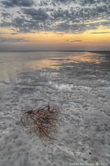 Warmth Left :   (Sakhr Abdullah |   ) Tags: sunset cold beach canon landscape leaving photography eos warmth ii 5d worm left abdullah  2011      sakhr