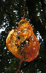 luminosity - http://scraptors.blogspot.com/ (moominmama's handbag) Tags: sculpture art saw pod trail stourhea scraptor