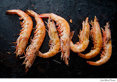 Australia (john white photos) Tags: food cuisine eating quality large shrimp prawns australia meat eat seven meal seafood taste southaustralia hotplate nutrients cookedprawns spencergulf bbqbarbie spencergulfprawns