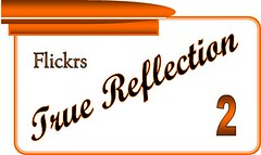 Flickrs True Reflection - Level 2