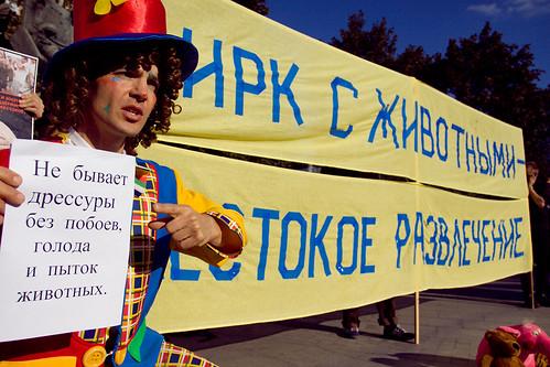 Пикет против жестокой эксплуатации животных в цирках by hegtor