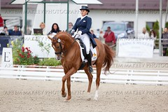 IMG_1532 (White Bear) Tags: horses horse animals sport russia equestrian artem dressage        makeev      equene