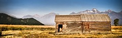 (Swastika G) Tags: old mountains barn nationalpark moose fields kelly homestead wyoming grandtetons mormonrow antelopeflats