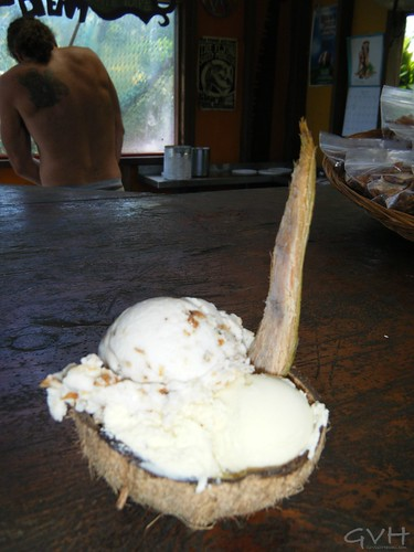 Coconut ice cream in a coconut shell with coconut shell spoon