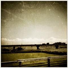 夏の終わりに、橋の上で考えた。このまま、夏が終わらないといいな