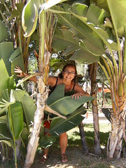 Yo entre plantas