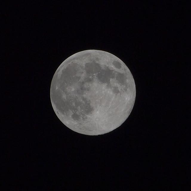 Meigetsu - Cool Moon