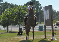 Pensacola Hunter Jumpers