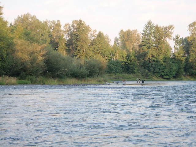 Fly Fishing The Willamette