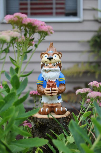 ucla gnome