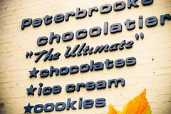 Peterbrooke Chocolatier (.melanie) Tags: friends food love shopping cupcakes puppies florida melanie jacksonville jenn hugs brianna eastcoast caryn cutestever palmcoast mostawesomeever jennmellevilliams
