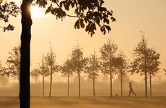 A Walk in the Park (Paul Beentjes) Tags: trees woman sun mist netherlands fog sunrise gold golden bomen nederland silhouettes hond runner gouden zon vrouw jogger goud heemskerk zonsopkomst silhouetten hardloopster landschapspark assumburg mygearandme mygearandmepremium mygearandmebronze mygearandmesilver mygearandmegold mygearandmeplatinum mygearandmediamond