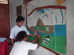 Environmental bases