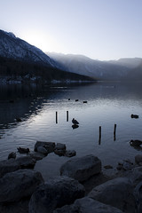 (Itsi Bitsi) Tags: lake mountains see nationalpark sonnenuntergang sundown ducks berge slovenia slovenija slowenien enten gletscher gebirge triglav glaciallake triglavnationalpark jezero bohinjskojezero gletschersee bohinjsko canoneos450d itsibitsi wocheinersee selinachrist