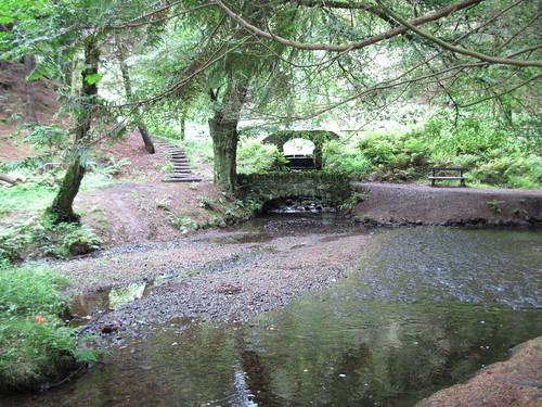 Parc Glynllyfon