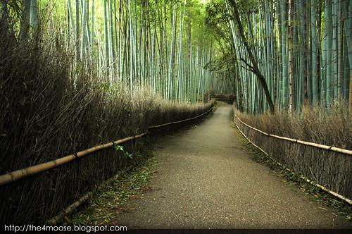 Arashiyama 嵐山 - Bamboo Groves