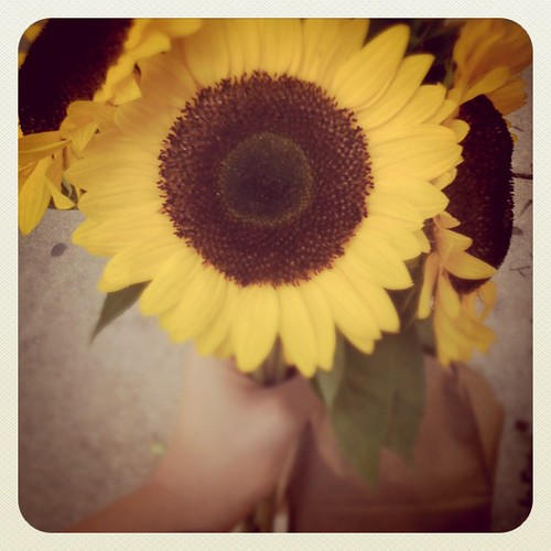 Bought myself sunflowers - they always make a day brighter