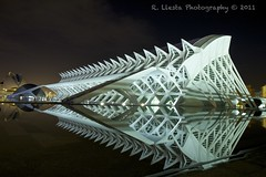 City of arts and science, Valencia, Spain (Rafael Llesta) Tags: urban reflection valencia spain arquitectura arquitecture ciudaddelasartesylasciencias arquitecturamoderna cityofartsandscience modernarquitecture espana flickraward borderfx canoneos60d efs1585isusm