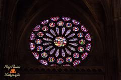 Vista de las Vidrieras de la Catedral de Leon. Espaa. (RAYPORRES) Tags: agosto leon vidrieras catedrales 2011