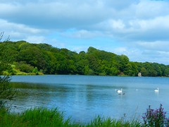 DSCN0132 (lordnoize) Tags: lake pond cumbria tarn carlisle talkin brampton talkintarn