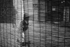a Japanese texture, sudare street scene (StephenCairns) Tags: street blackandwhite bw woman blur texture silhouette japan shopping curtain streetphotography bamboo oldwoman gifu 竹 elderlywoman shoppingarcade 白黒 bambooblind 買い物 sudare すだれ yanagase 岐阜県 30mmsigmaf14 gifucity canon50d 岐阜市 年寄り 柳ヶ瀬 diyl 竹すだれ naturallytexturized takesudare
