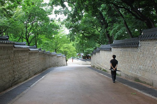 Strict Guided Tour at Secret Garden, Changdeokgung Palace, Seoul South Korea