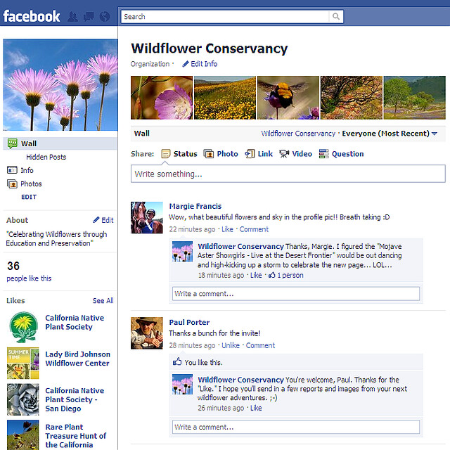 Wildflower Conservancy on Facebook!