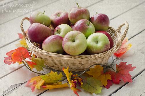 243:365秋天的苹果