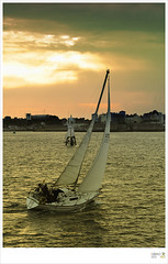 Sailing (bao7555) Tags: sailboat sailing