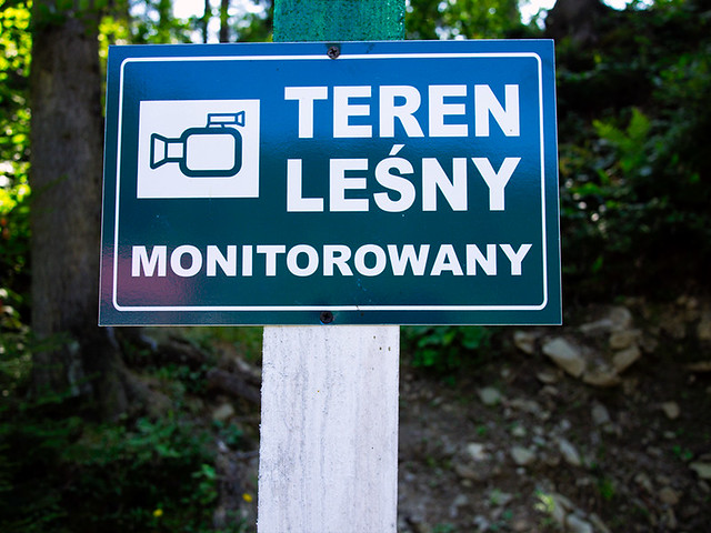 monitoring leśny