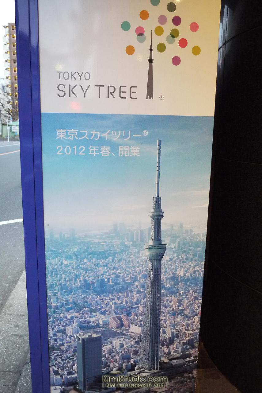 2011年 311 日本行-928