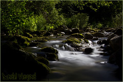 Eau - Rivire - Le Loup, Grolires (06) - 02 (Dany-de-Nice) Tags: longexposure river eau rivire poselongue