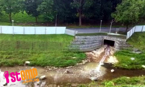 Bishan Park canal filled with stinking liquid discharge