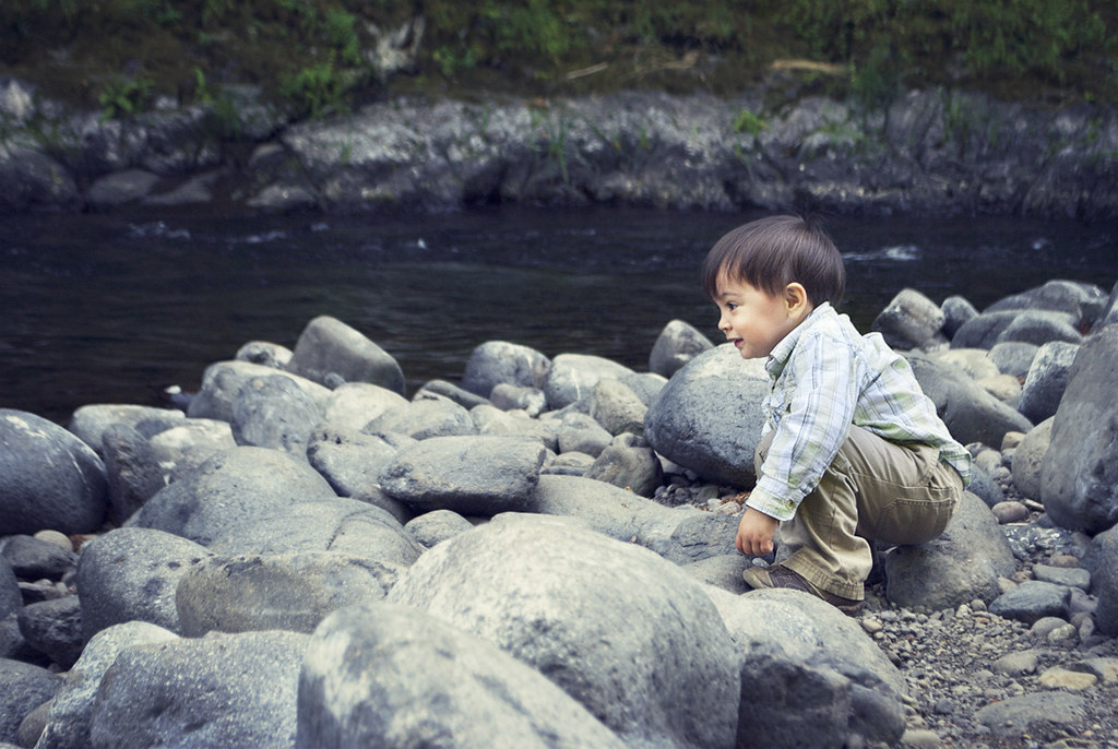 Tillamook State Forest - Little C Throwing River Rocks