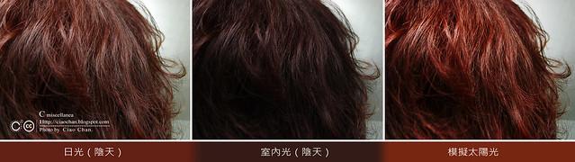 C推薦:西班牙 NATURTINT® 赫本植物染髮劑 - 7C-金赤土色  R10411055