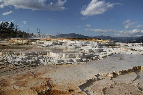 Yellowstone with Pa 292