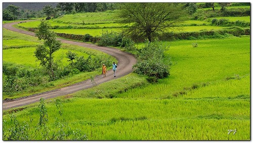 Walk along the Curvy road in heaven by Yogendra174