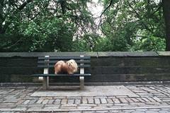 50% (Charley Lhasa) Tags: city nyc newyorkcity urban dog ny newyork film rain 35mm bench rainyday manhattan scan n