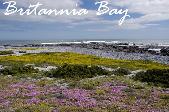 Britannia Bay