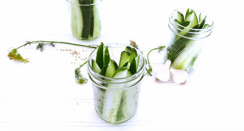 fridge pickles