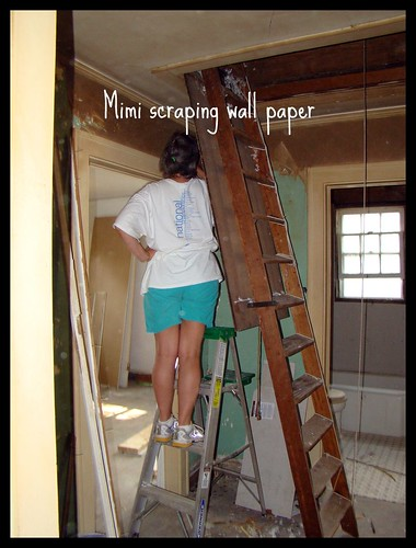 Mimi scraping the wallpaper