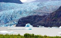 Mendenhall Glacier - Alaska (blmiers2) Tags: travel blue mountain mountains nature alaska nikon mendenhall d3100 blm18 blmiers2
