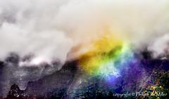 The Wettest Place on Earth (philipleemiller) Tags: mist rain mystery clouds hawaii kauai rainbows hanalei pacificislands lavaformations mountwaiʻaleʻale