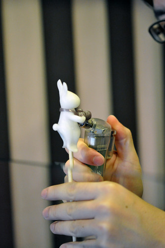 Ame-pyon rabbit