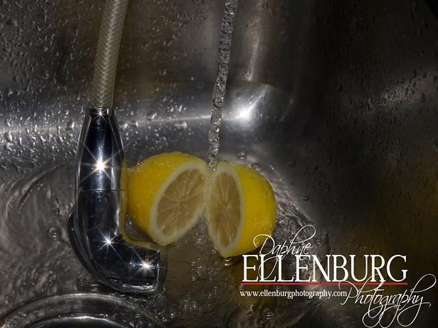 FB 11-09-09 Lemon-08a