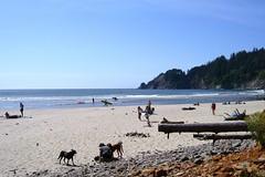 Short Sands Beach (hartjeff12) Tags: beach oregon oswaldweststatepark shortsands