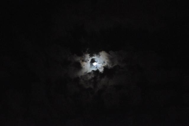 moon_6571 web