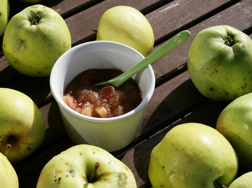 homemade apple chutney