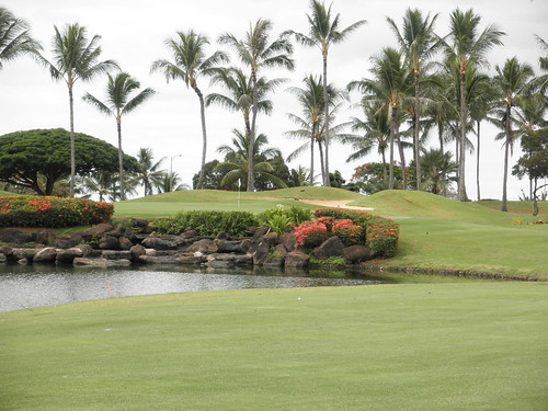 WAIKELE COUNTRY CLUB 070